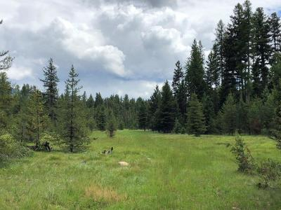 Seeley Lake Residential Lots & Land For Sale: Nhn Airport Road