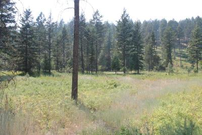 Bigfork Residential Lots & Land For Sale: 2034 Silvertip Drive South