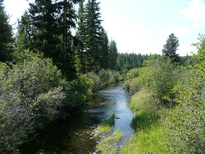 Lincoln County Residential Lots & Land For Sale: Lot #5 Brookie Way