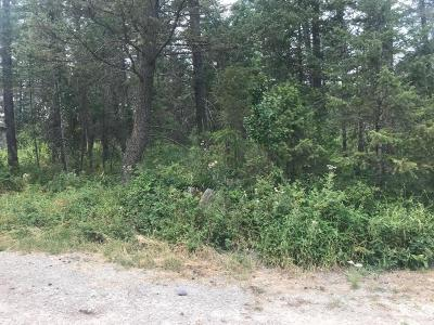 Whitefish Residential Lots & Land Under Contract Taking Back-Up : 450 Cougar Trail