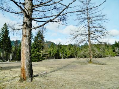 Flathead County Residential Lots & Land For Sale: Nhn Jade Lane