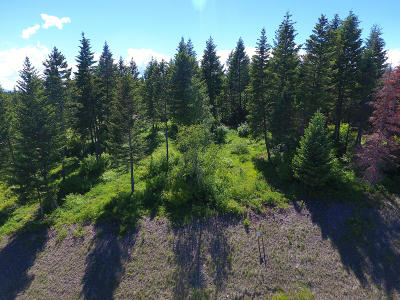 Columbia Falls Residential Lots & Land For Sale: 361 Gleneagles Trail