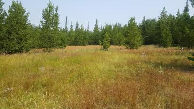 Arlee Residential Lots & Land For Sale: Mill Creek Road