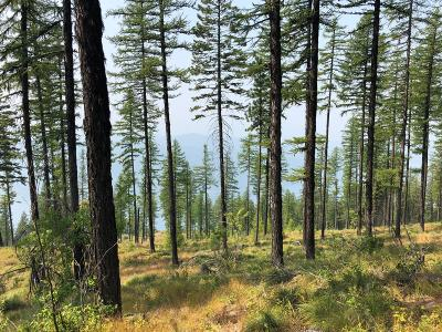 Whitefish Residential Lots & Land For Sale: 266 Elk Highlands Drive