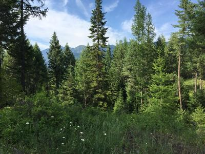Kalispell Residential Lots & Land For Sale: 46 Wild Turkey Lane