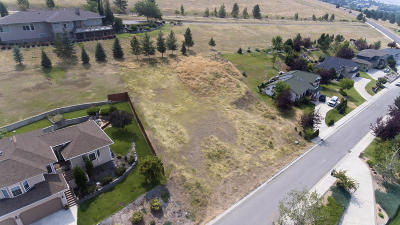 Residential Lots & Land For Sale: 1645 Shadow Lane