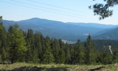 Flathead County Residential Lots & Land For Sale: Tr 3aada Jackson Meadows Road
