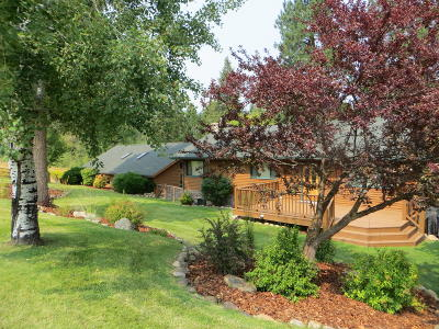 Stevensville Single Family Home For Sale: 390 Kootenai Creek Road