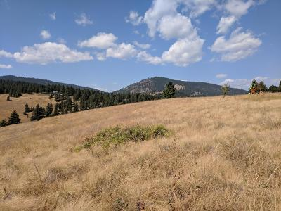 Lake County Residential Lots & Land For Sale: 99 South Rim Drive