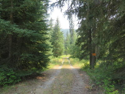 Kila Residential Lots & Land For Sale: 843 Rogers Lake Road