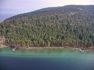 Lake County Residential Lots & Land For Sale: W-3 Wild Horse Island