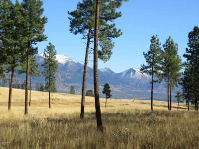 Lincoln County Residential Lots & Land For Sale: Nhn Ponderosa Pine Drive