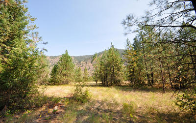 Sanders County Residential Lots & Land For Sale: Nhn Frontier River Sites