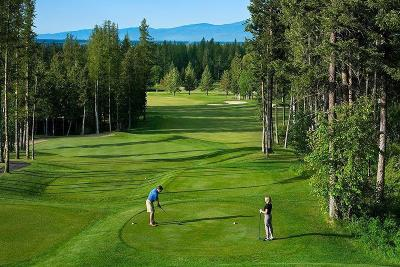Flathead County Other For Sale: 115 Spyglass Hill Loop