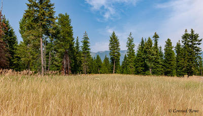 Bigfork Residential Lots & Land Under Contract Taking Back-Up : Nhn Tree Farm Trail