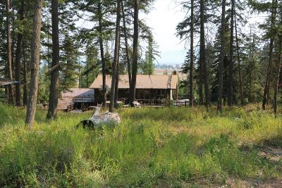 Single Family Home For Sale: 684 Snow Camp Road