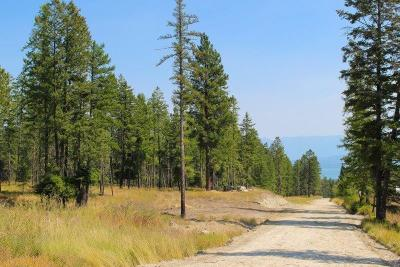 Flathead County Residential Lots & Land For Sale: Nhn Tr 1 Boon Road