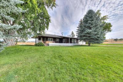 Stevensville Single Family Home For Sale: 4255 Lily Lane