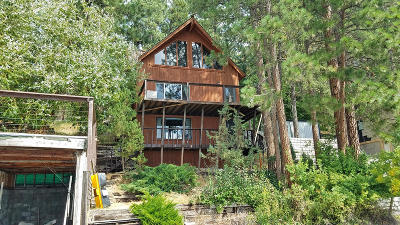 Lake County Single Family Home For Sale: 32885 South Finley Point Road