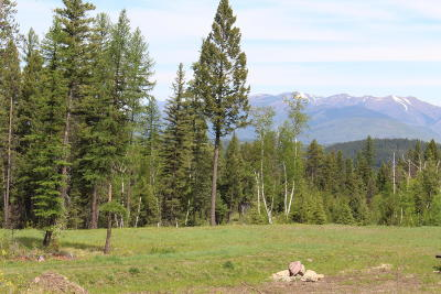 Flathead County Residential Lots & Land For Sale: Nhn Glacier Hills