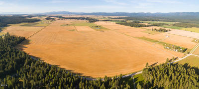 Flathead County Residential Lots & Land For Sale: Parcel 2 Dandy Way