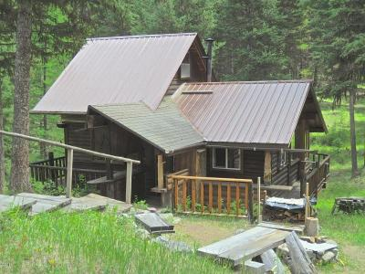Flathead County Single Family Home For Sale: 1950 Lower Lost Prairie Road