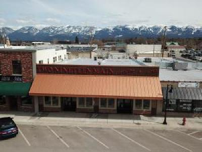 Lake County Commercial For Sale: 219 Main Street