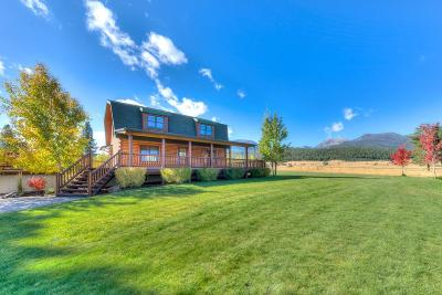 Darby Single Family Home For Sale: 410 Mt Zion Loop