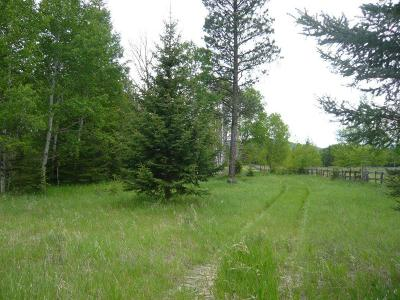 Kalispell Residential Lots & Land For Sale: 360 Managhan Lane