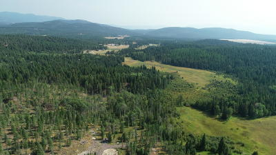 Whitefish Residential Lots & Land Under Contract Taking Back-Up : Nhn Twin Lakes Road