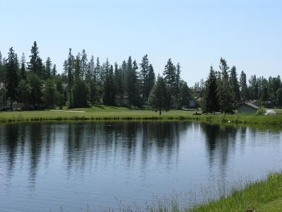 Flathead County Residential Lots & Land For Sale: 732 Seminole Lane