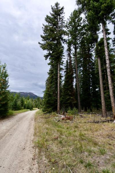 Lake County Residential Lots & Land Under Contract Taking Back-Up : Nhn Fenby Lane