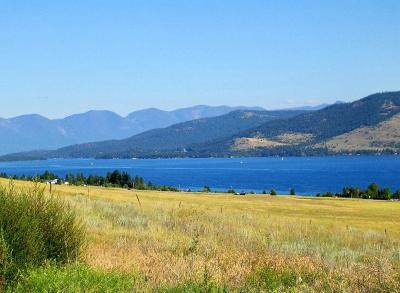 Lake County Residential Lots & Land For Sale: Nhn Left Hand Drive