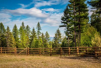 Whitefish Residential Lots & Land For Sale: 85 Blanchard View Drive