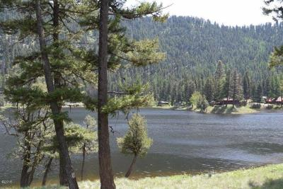 Seeley Lake Residential Lots & Land For Sale: 43946 Big Waters Ranch Road