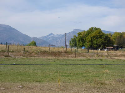 Corvallis Residential Lots & Land For Sale: 481 Paradise View