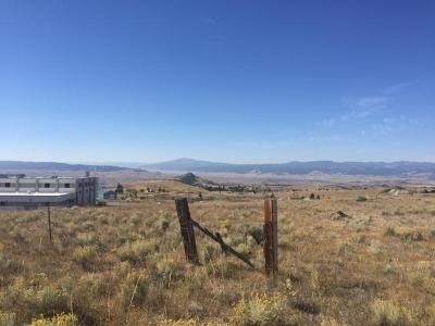 Butte Residential Lots & Land For Sale: Tract A Snowflake Lode