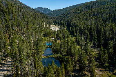 Ravalli County Residential Lots & Land For Sale: 2175 Hughes Creek Road