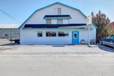 Lake County Commercial For Sale: 805 Main Street