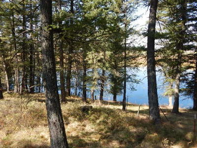 Bigfork Residential Lots & Land For Sale: 49 Grizzly Court