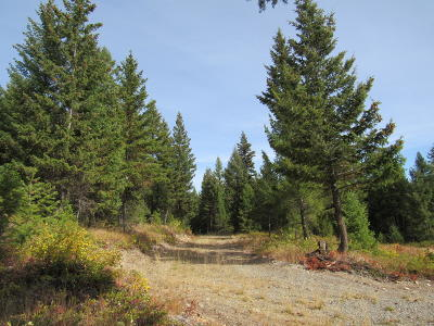 Lincoln County Residential Lots & Land For Sale: 794 Yelping Coyote Run