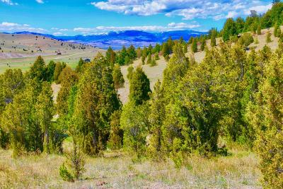 Butte Residential Lots & Land For Sale: 205 Haggin View Rd