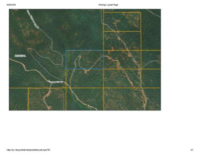Residential Lots & Land For Sale: #214600 Packer Creek Road
