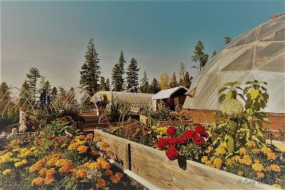 Bigfork Residential Lots & Land For Sale: 65 Big Cedar
