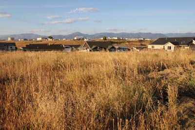 Residential Lots & Land For Sale: Phase 2-A Running W Ranch
