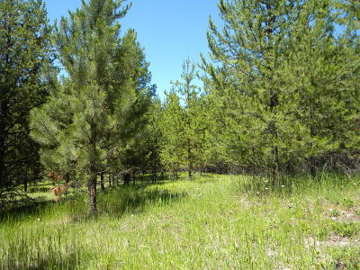 Flathead County Residential Lots & Land For Sale: 1980 Lower Lost Prairie Road