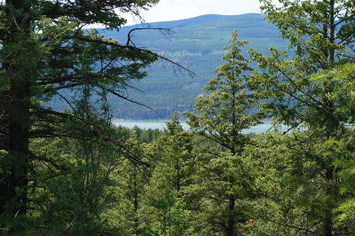 Lincoln County Residential Lots & Land For Sale: Nhn Skyview Drive