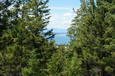 Lincoln County Residential Lots & Land For Sale: Skyview Drive