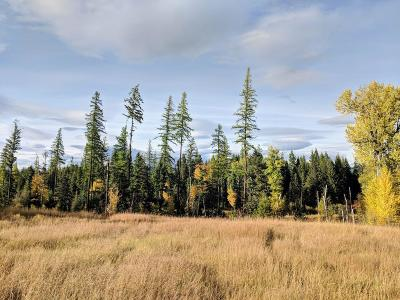 Flathead County Residential Lots & Land For Sale: 103 Glacier Hills Drive East