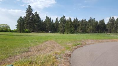 Flathead County Residential Lots & Land For Sale: 560 Red Hawk Lane